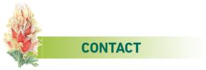 title-contact